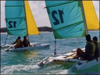 Catamarans et cours de voile