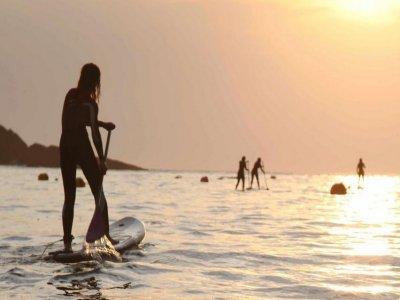 Watermansport Surfschool Paddle Surf