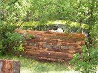 Terraib Robin des bois