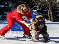Ski pour les tout petits
