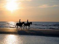 Balade a cheval sur la plage