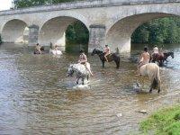 Randonnees equestres avec la Vallee des Cerfs