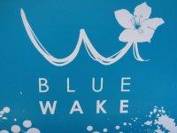 Blue Wake Ski Nautique