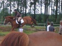 Randonnees a cheval proche de Poitiers