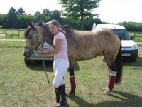 Vie du club equestre de Sainval