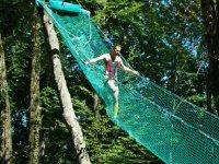 La toile d araignee a Leman Forest