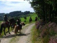 Balades equestres a Chesny
