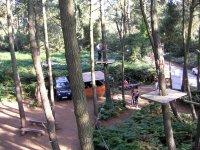 Le parcours dans les arbres