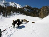 Paysages des Haute Alpes