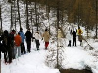 randonnee groupee en raquettes a neige