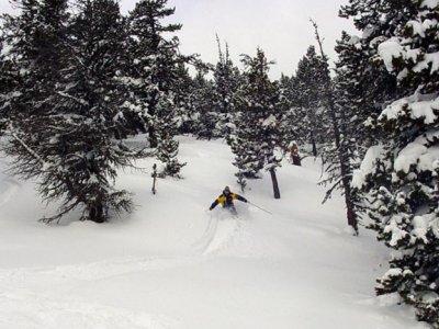 Ski n' Co Ski
