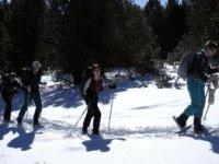 balade raquettes a neige en groupe