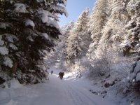 Randonnee a ski pour bons skieurs