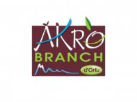 Akrobranch d'Orlu Parcours Aventure
