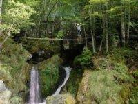 Parcours entre arbres et rochers