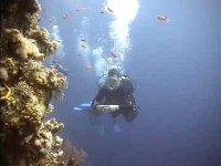 Plongee d exploration