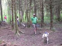 Cani Randonnée à la Ferrière - 2 heures - Adulte