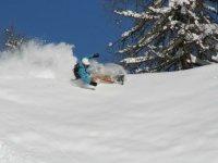 Snowboard en plein virage dans la poudreuse