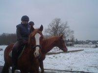 Balade a cheval dans le arc Naturel Régional Loire Anjou Touraine.JPG