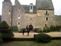 Cheval et Chateau