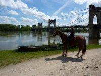 Sortie cheval en Tourraine.JPG