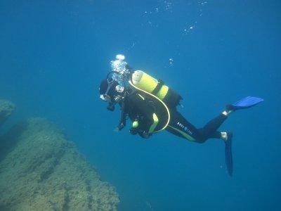 Coach Diving 54
