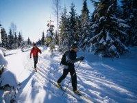 Ski de fond Annecy en randonnee et cours