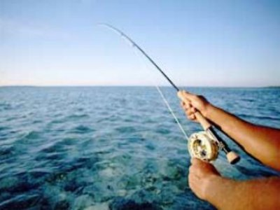 Bleu Marine Location Pêche
