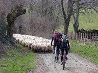 Randonnee Velo VTT dans le Pays Basque