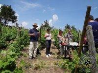 Casse Croute dans les Vignes avec GyroPilat