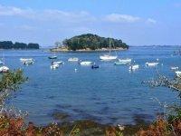 Decouverte du Golfe du Morbihan en Segway