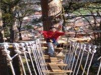 Le pont de singe