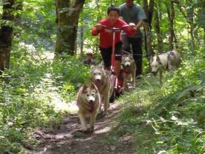 Cani Trottinette-Clos de la Vallée Blanche-Adulte