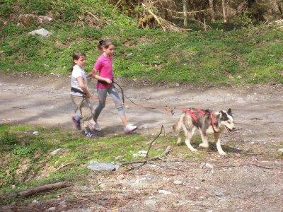 Cani Trottinette-Clos de la Vallée Blanche-Enfant