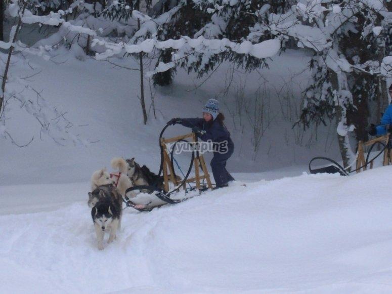 hiver 2013 suite 007.JPG