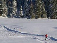 Pistes damées pour le ski de fond dans le Jura