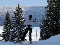 Ski de fond dans un parc naturel