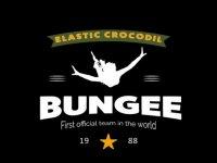 Elastic Crocodil Bungee Vendée - Viaduc de Coquilleau