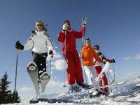 Ski tout niveau