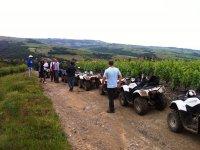 Randonnees quad dans le Beaujolais