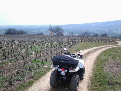 Quad Vignes Chateaux Tourisme Viticole