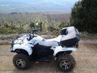 Location de quad et tourisme viticole