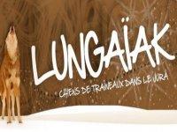 Lungaïak
