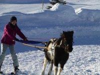 Ski joering en Isere