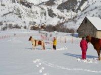 Initiation au ski joering sur Serre Chevalier
