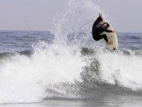 Moniteur de surf