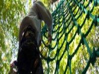 On grimpe à Sherwoodparc