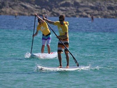 Sweet Spot Paddle Surf