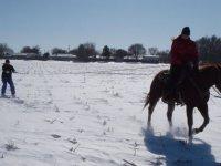 Initiation ski tracte par un cheval