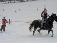 ski joering avec le haras du Farban